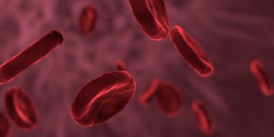 Anemia mediterranea,  un nuovo farmaco-trappola salva i globuli rossi. Speranze dalla terapia genica