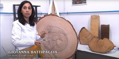 Lo studio delle piante legnose. Il DendroLab del DiSTABiF a SuperQuark. Intervista a Giovanna Battipaglia
